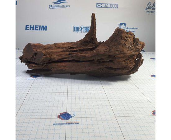 Коряга мангровая XL 35- 45см, фото , изображение 2