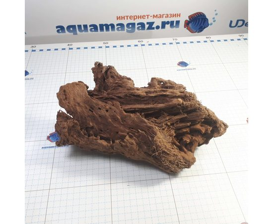 Коряга мангровая XL 35- 45см, фото