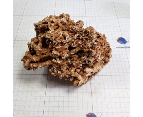 Сухой рифовый камень СРК 0,5-5 кг, фото 9