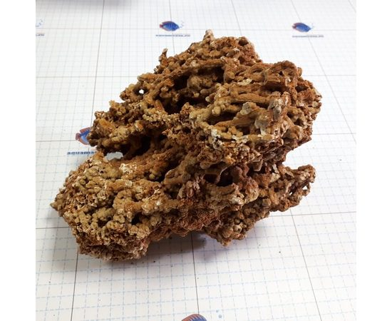 Сухой рифовый камень СРК 0,5-5 кг, фото 2