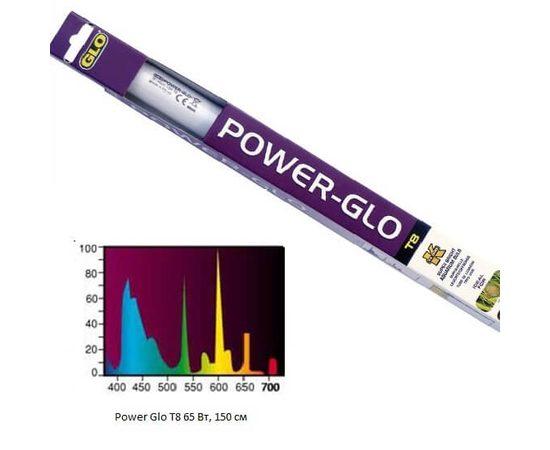 Лампа POWER-GLO 65 Вт, фото