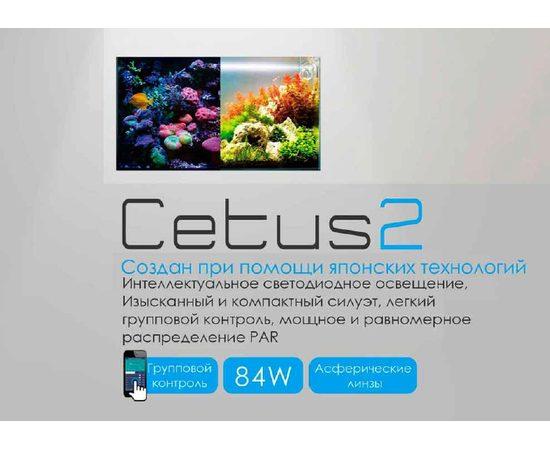 Светодиодный светильник Cetus 2, фото , изображение 2