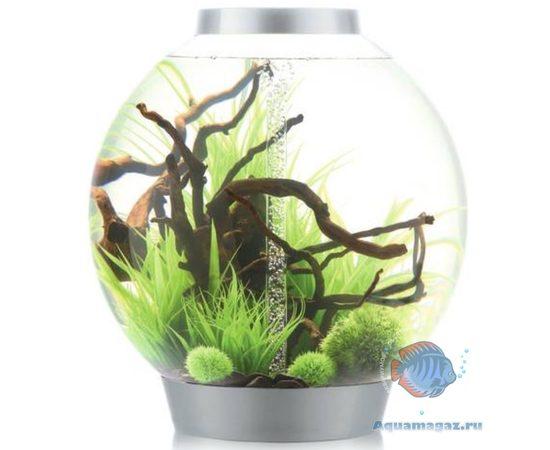 Аквариум biOrb CLASSIC 60 LED Thermo, Цвет аквариума: Серебро, фото , изображение 2