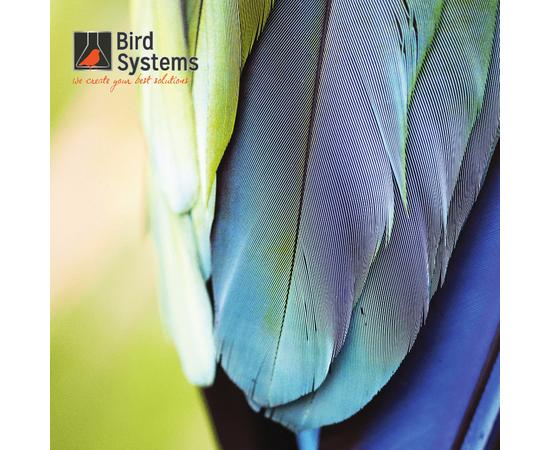 Лампа для птиц BIRD SYSTEMS LAMPS T8, Размер лампы: Т8 450 мм / 15 Вт, фото