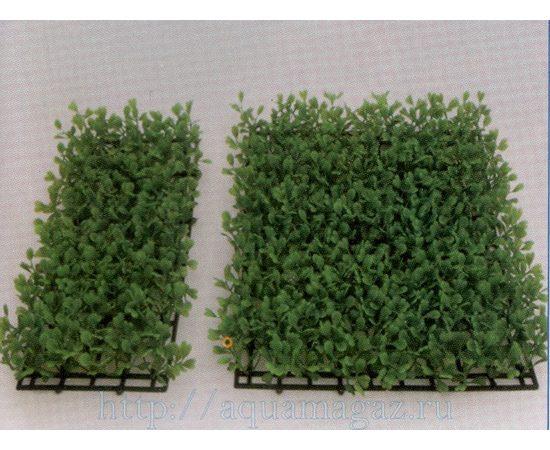Растение Коврик 12,5х25 см зеленое, фото