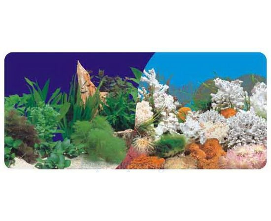 Фон двухсторонний 40см. Растительный (темно-синий) / Белые кораллы морской