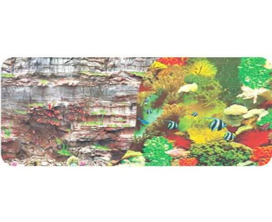 Фон 50см. Камни скалистая стена и  Морской кораллы с рыбами, фото