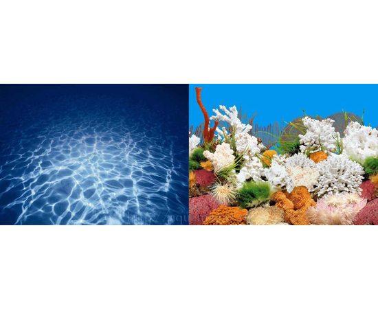 Фон 50см. Синее море и  Белые кораллы, фото