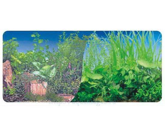 Фон 60см. Растительный нимфея синий  и Растительный с камнем, фото