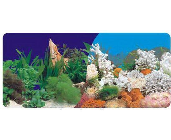 Фон 60см. Растительный темно-синий и Белые кораллы морской, фото