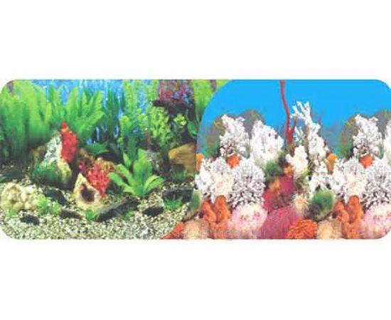 Фон 100см. Растительный пресн. и Белые кораллы морской, фото