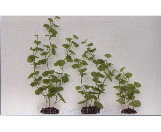 Растение Кардамин 12см шелковое, фото