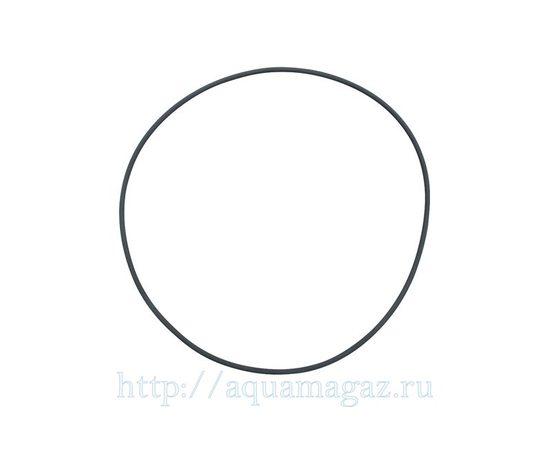 Уплотнительное кольцо большое для Fluval FX5 FX6 , фото