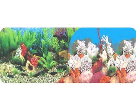 Фон 40см. Растительный пресн. и Белые кораллы морской, фото
