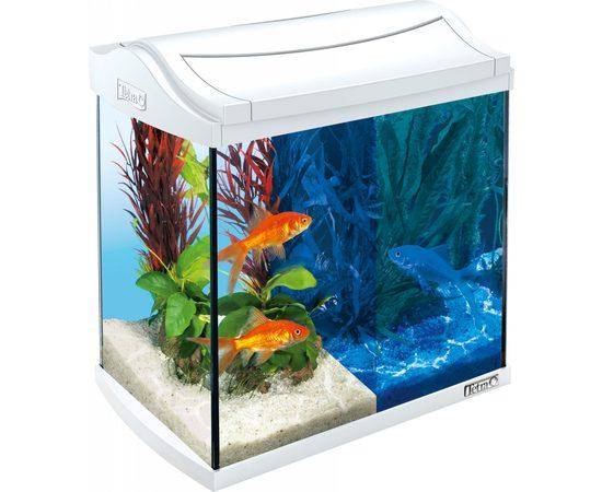 Аквариум Tetra AquaArt LED Goldfish 20л белый 39,5х28х33см, фото