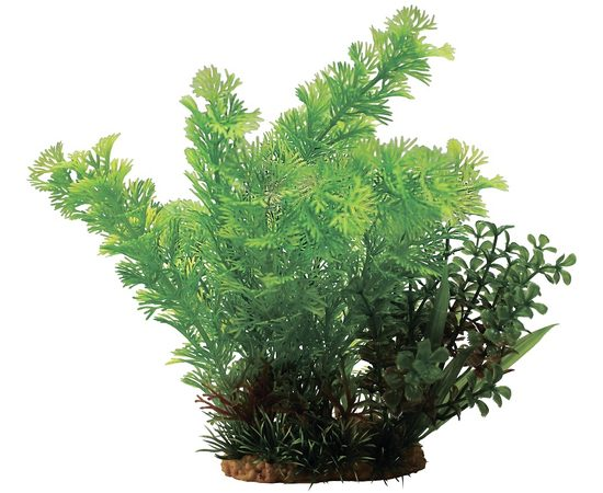 Композиция из пластиковых растений 20см, - 1 -aquamagaz.ru