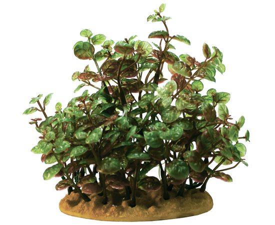 Растение пластиковое PRIME Людвигия 15см, фото
