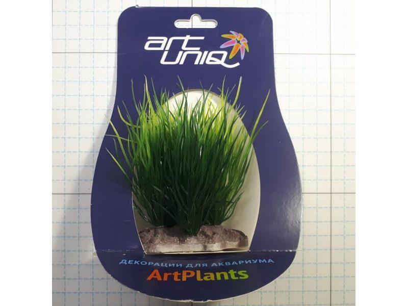 Растение Пузырчатка 10-12 см Art Uniq, фото 1